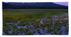 Beach Towel featuring the photograph Mt. Bachelor Twilight by Kevin Desrosiers
