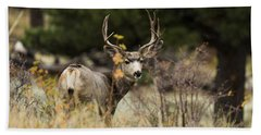 Mule Deer I Beach Towel