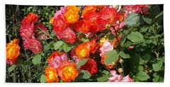 Multi Colored Rose Bush Beach Towel by Catherine Gagne