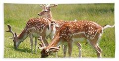 Multitasking Deer In Richmond Park Beach Sheet by Rona Black