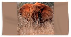 My Elephant In Africa Beach Sheet by Phyllis Kaltenbach