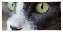 Beach Towel featuring the photograph My Sweet Boy by Heidi Smith