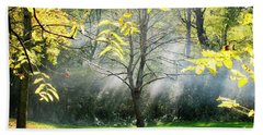 Beach Towel featuring the photograph Mystical Parkland by Nina Silver