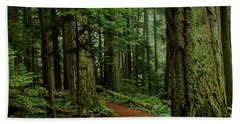 Mystical Path Beach Towel by Randy Hall