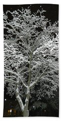 Beach Towel featuring the photograph Mystical Winter Beauty by Emmy Marie Vickers
