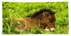 Beach Towel featuring the photograph Nap In The Buttercups by Joan Davis
