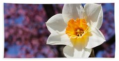 Narcissus And Cherry Blossoms Beach Towel