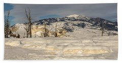 Beach Towel featuring the photograph Natural Beauty by Sue Smith