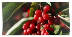 Natures Gift Of Red Berries Beach Sheet