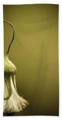 Nature's Little Lamp Beach Towel by Shane Holsclaw