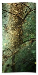 Natures Past Captured In A Web Beach Towel by Kim Pate