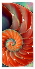 Nautilus Shell - Nature's Perfection Beach Sheet by Sharon Cummings