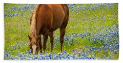 Nelly Grazing Among The Bluebonnets Beach Towel