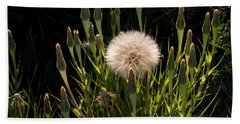 Beach Towel featuring the photograph Neon Dandelion by Angelique Olin