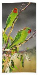 New Life - Little Lorikeets Beach Sheet