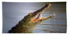 Nile Crocodile Swollowing Fish Beach Towel by Johan Swanepoel