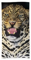 Beach Towel featuring the photograph No Solicitors African Leopard Endangered Species Wildlife Rescue by Dave Welling