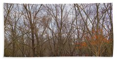 North Florida Orchard In Fall Beach Towel