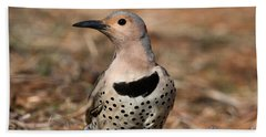 Northern Flicker Female Beach Towel