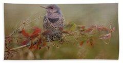 Northern Flicker In Fall Colors Beach Towel