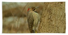 Northern Flicker On Tree Beach Towel