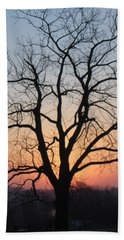 November Walnut Tree At Sunrise Beach Sheet