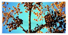 Nuts And Berries Beach Sheet by Matt Harang