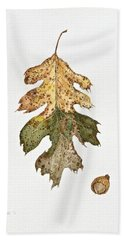 Oak Study Beach Towel by Michele Myers