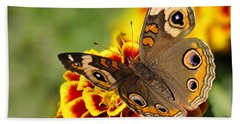 Beach Towel featuring the photograph October Garden by Nava Thompson