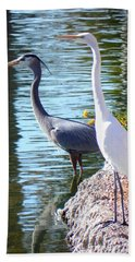 Beach Towel featuring the photograph Odd Couple by Deb Halloran