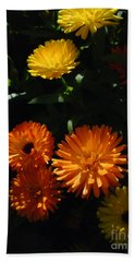 Beach Towel featuring the photograph Old-fashioned Marigolds by Martin Howard