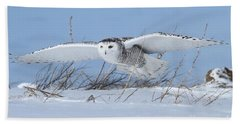 Beach Towel featuring the photograph On Patrol by Heather King