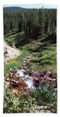 On Top Of The Continental Divide In The Rocky Mountains Beach Towel