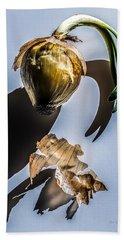Onion Skin And Shadow Beach Towel by Bob Orsillo