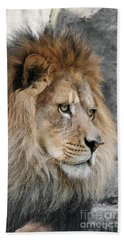 Beach Towel featuring the photograph Onyo #13 by Judy Whitton