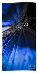 Open Wings Of Blue Morpho Butterfly Beach Towel