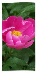 Beach Towel featuring the photograph Peony  by Eunice Miller