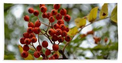 Orange Autumn Berries Beach Sheet
