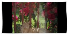 Beach Towel featuring the photograph Orange Cat In The Shade by Absinthe Art By Michelle LeAnn Scott