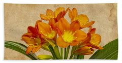 Orange Clivia Lily  Beach Towel by Sandra Foster