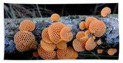 Orange Fungus Beach Towel by Pamela Walton