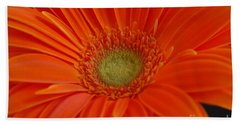 Orange Gerber Daisy Beach Sheet