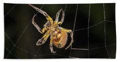 Orb-weaver Spider In Web Panguana Beach Sheet by Konrad Wothe
