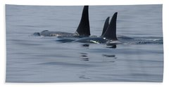 Orca Family Beach Towel by Marilyn Wilson