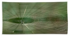 Beach Towel featuring the photograph Orchard Orbweaver #2 by Paul Rebmann