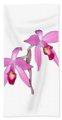 Orchid 1-1 Beach Towel