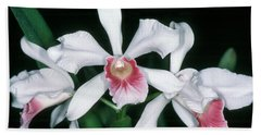 Orchid 10 Beach Towel