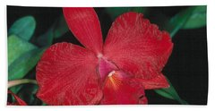 Orchid 12 Beach Towel
