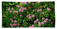 Oregon Azaleas Beach Sheet