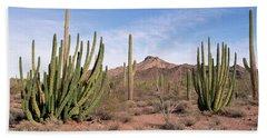 Organ Pipe Cactus Natl Monument Beach Towel